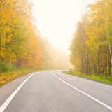 Road in dense fog Stock Photography