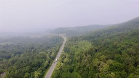 Road in the dense foggy forest stock video footage