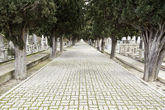 Road with depth in a cemetery Royalty Free Stock Photography