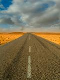 Road in the desert Stock Images