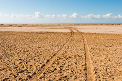 Road in desert in the national park  Ras Mohammed Royalty Free Stock Photography