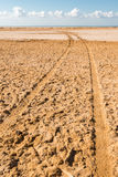 Road in desert in the national park  Ras Mohammed Royalty Free Stock Image