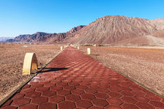 Road in desert near the red sea Stock Photography