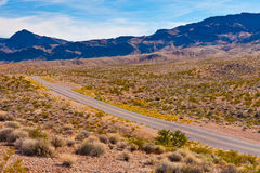 A road in the desert of Nevada, USA Royalty Free Stock Images