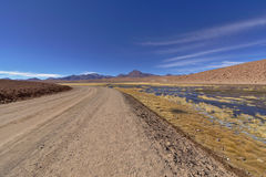 Road in the desert next to lush pond and volcanoes. Stock Photos