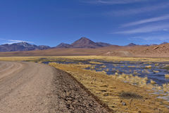 Road in the desert next to lush pond and volcanoes. Stock Image