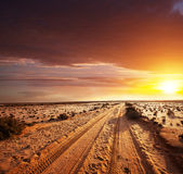 Road in desert Royalty Free Stock Image