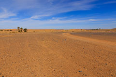 Road in the desert Sahara Royalty Free Stock Photography