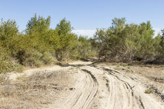 Road in the desert. On the sand in Kazakhstan Royalty Free Stock Photo