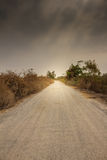 Road in the desert and stormy sky. Stock Photography
