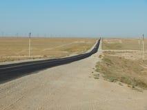 Road in the desert. Stock Image