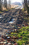 Road, dirt, path, puddle, the ground, ground, soil, dirt, earth Royalty Free Stock Image