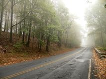 Road disappears in the Mist Stock Images