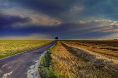 Road into the distance Stock Photography