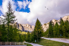 The road in the Dolomites Stock Image