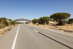 Road in Donana national park, Spain Stock Photos