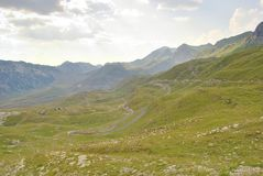 Road in the Durmitor, Montenegro. Road among alpine meadows of Durmitor National Park, Montenegro Stock Photography