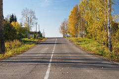 Road early in the morning among autumn trees Royalty Free Stock Images