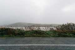 Road edge filled with rushes. Against sea and misty mountains Royalty Free Stock Photos