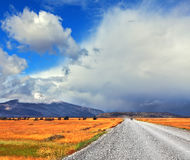 The road in the endless pampas Stock Photography