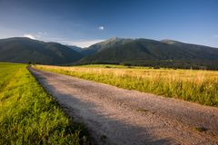 Road in evening Royalty Free Stock Photo