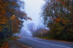 Road in the evening, autumn, fog, royalty free stock image