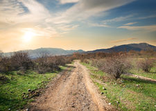 Road in evening Royalty Free Stock Photography