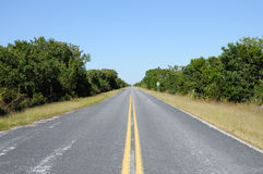 Road in the Everglades National Park Royalty Free Stock Photos