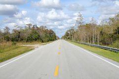 Road in the Everglades National Park Royalty Free Stock Photography