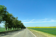 Road. Explore the scenic roads of Russia Royalty Free Stock Photography