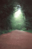 The road and the fairy forest. Light at the end of the tunnel royalty free stock photos