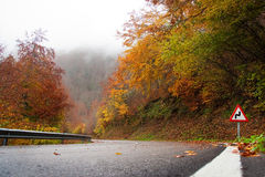 Road in the fall stock photos