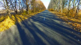 The Road in The Fall. Aerial Survey stock video footage
