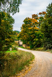 Road in the Fall Royalty Free Stock Images