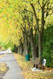 Road in Fall. In Southern Quebec stock photo