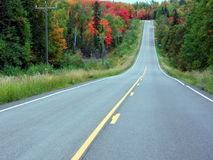 Road in fall season Stock Photos