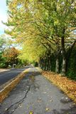 Road in Fall. In Southern Quebec stock photography