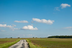 Road Through Farm. A narrow paved road leads back into farming fields under a blue sky with small, puffy clouds Royalty Free Stock Photo