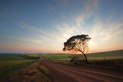 Road on a farm Stock Photo