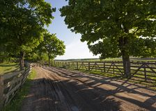 The road on a farm Royalty Free Stock Photo