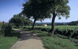 Road through farmland Royalty Free Stock Photo