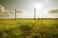 Road in the field. Road and electric powerline on the concrete columnes in the grass field Stock Photo