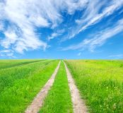 Road in field. And blue sky with clouds Stock Images