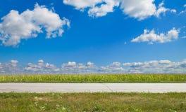 Road field Stock Photos