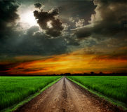 Road in field Royalty Free Stock Images
