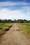 Road in the field. Royalty Free Stock Images