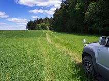 Road through field. Royalty Free Stock Image