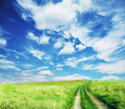 Road in field Stock Photography