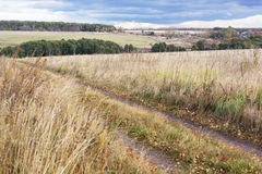 The road into the field. Royalty Free Stock Photography