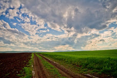 Road, field and  beautiful sky Royalty Free Stock Photos